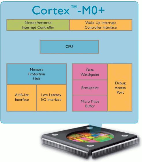 ARM Cortex-M0+ Architecture