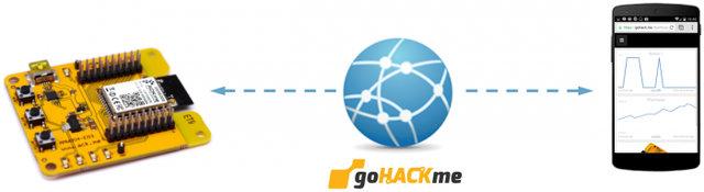 gohackme_network_diagram