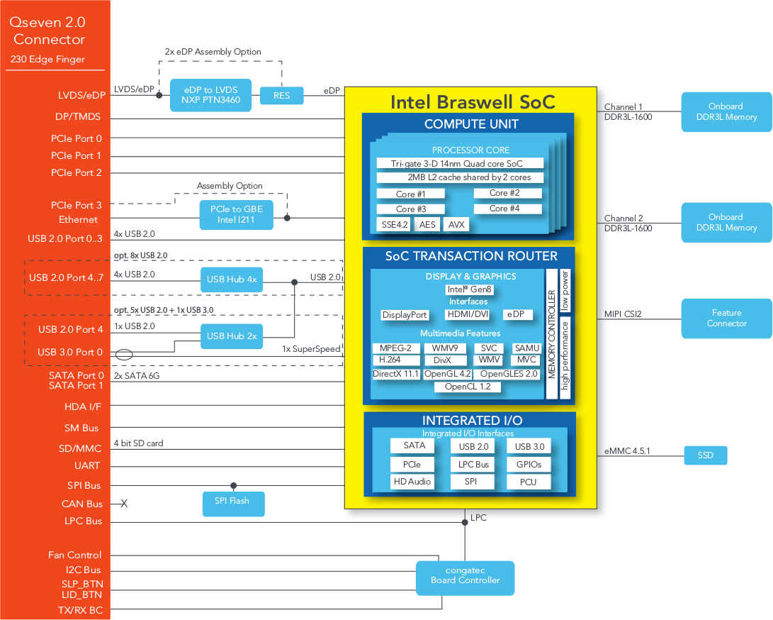 conga-QA4 Block Diagram (Click to Enlarge)