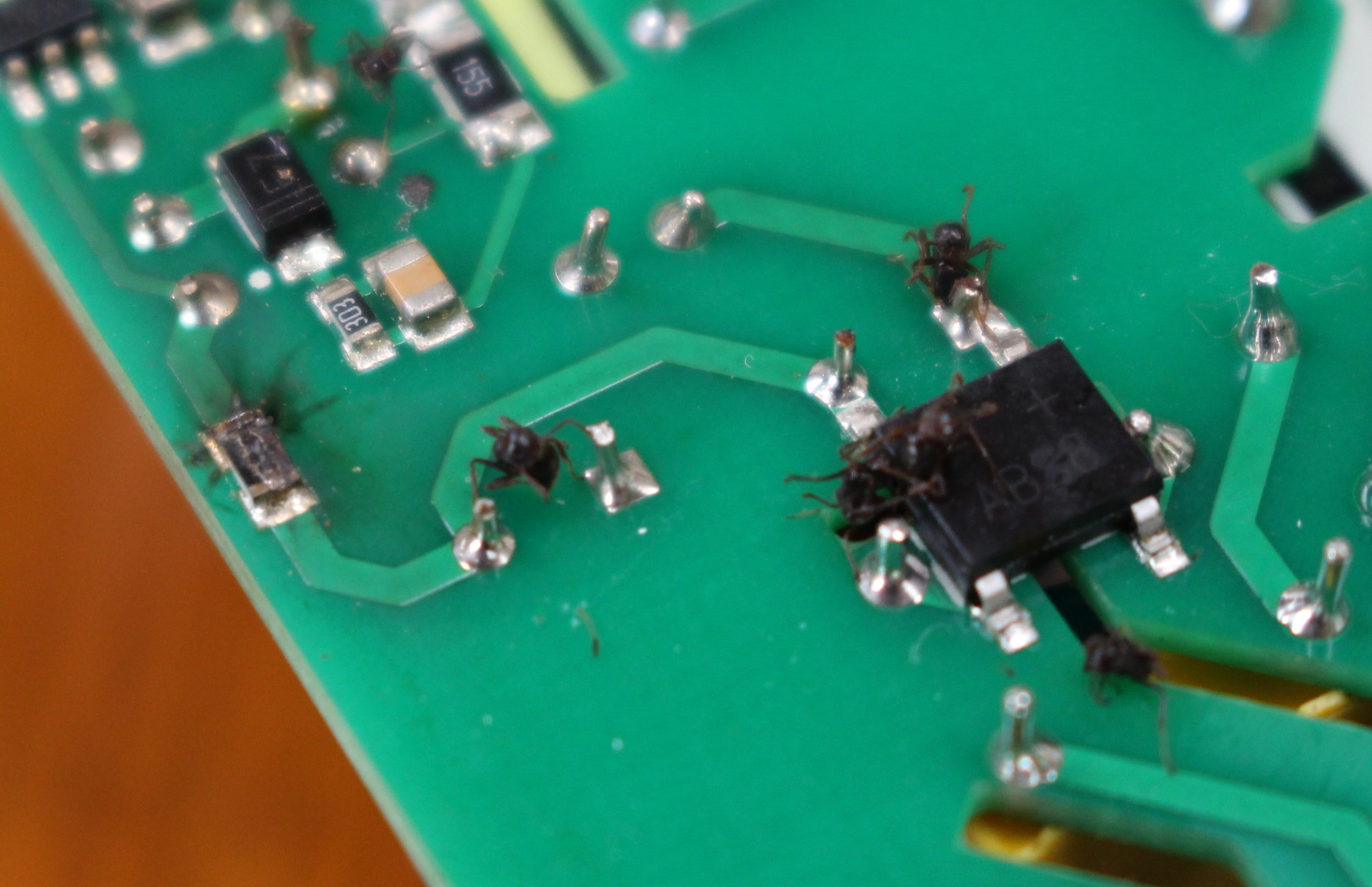 My Sonoff Th16 Wireless Switch Is Dead Postmortem Analysis Circuit Insect Destroys