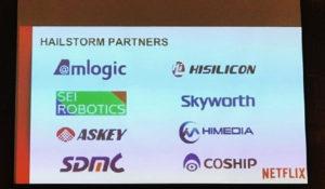 Netflix Hailstorm Partners