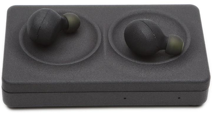 WattUp Hearables Developer Kit