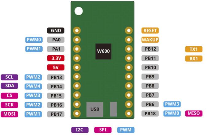 W600-PICO Pinout Diagram