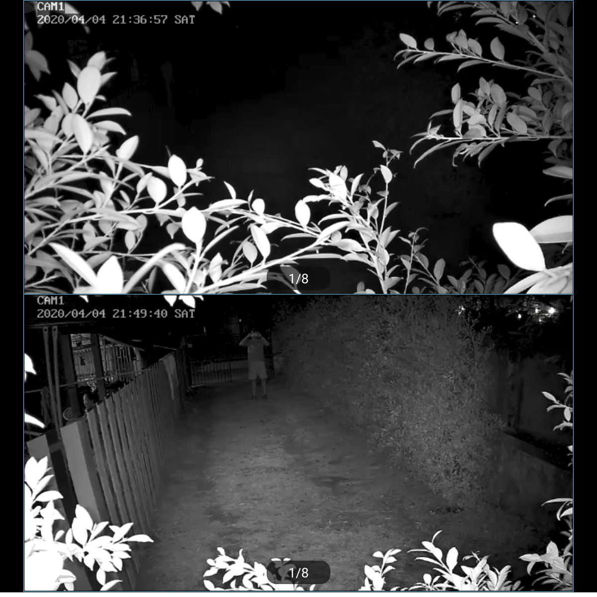 HeimVision Camera Night Vision Leaves