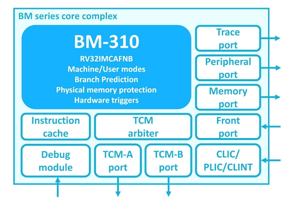 BM-310 RISC-V IoT Processor