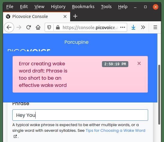 invalid wake word